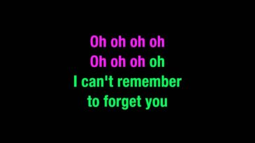 cant remember to forget you shak