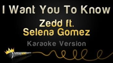 i want you to know zedd con sele