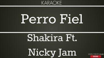 perro fiel shakira ft nicky jam