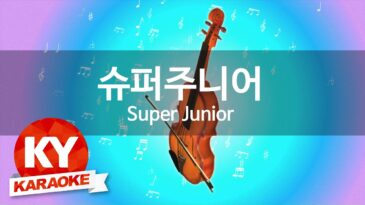 mr simple super junior