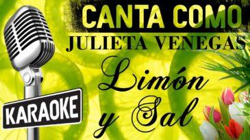 limon y sal julieta venegas