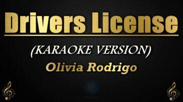 drivers license olivia rodrigo